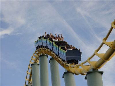 Picture Of Shark Roller Coaster